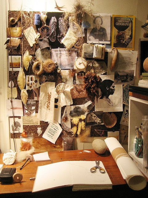 Old and new photos, natural objects. Science and nature and form. Studio of artist/sculptress Erin Curry. (Inspiration board/mood board/picture wall, artist studio/office.)