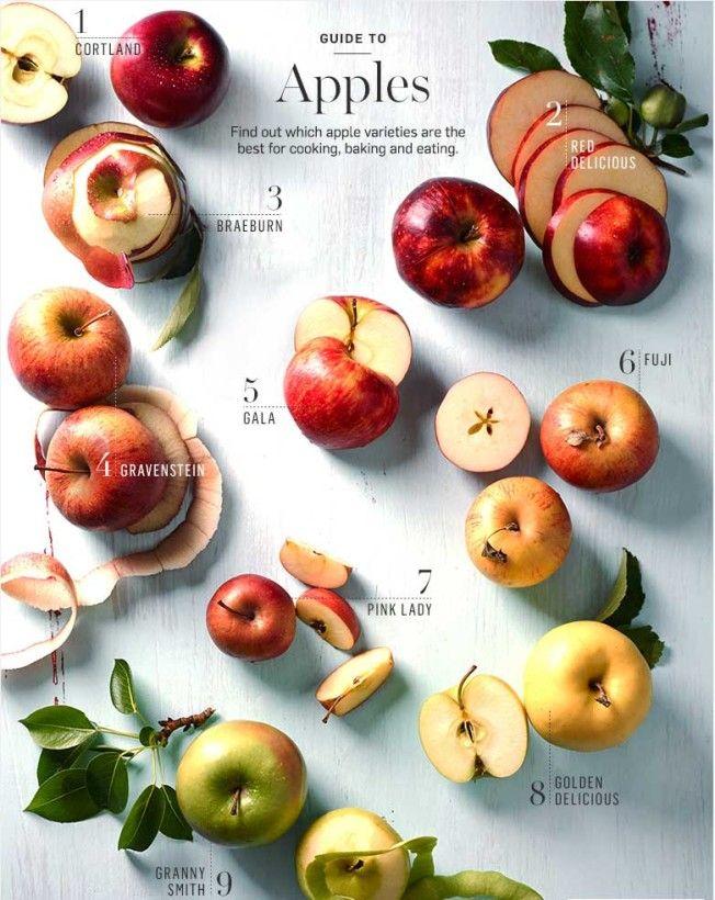 Williams-Sonoma Apple Guide