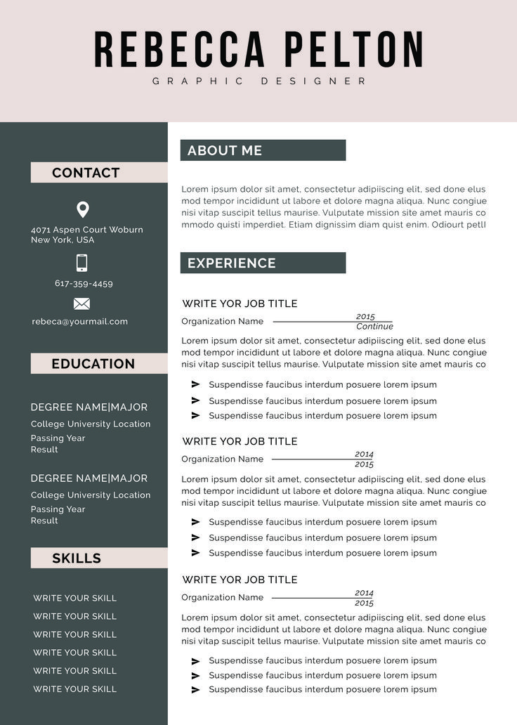 Professional Resume Template Modern CV Template for Word