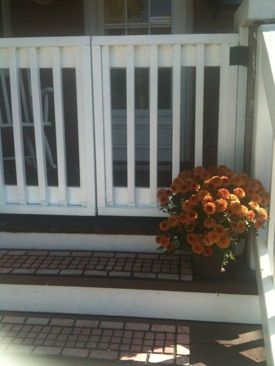 how to keep turkeys off porch