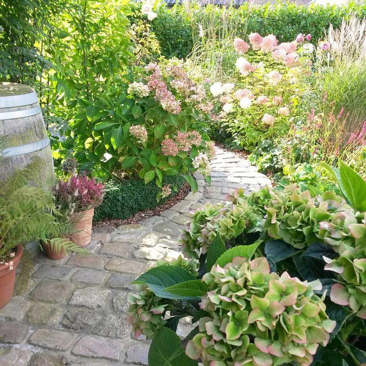 297 best Garten images on Pinterest Backyard ideas, Balconies and - schoner garten mit wenig geld