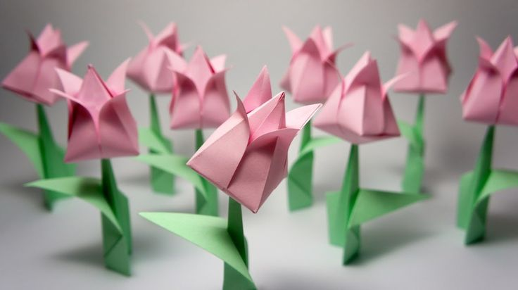 How to make an origami Tulip Difficulty level: simple My paper: 15cm x 15cm copy paper FACEBOOK: http://www.facebook.com/JoOrigami GOOGLE+: https://plus.goog...