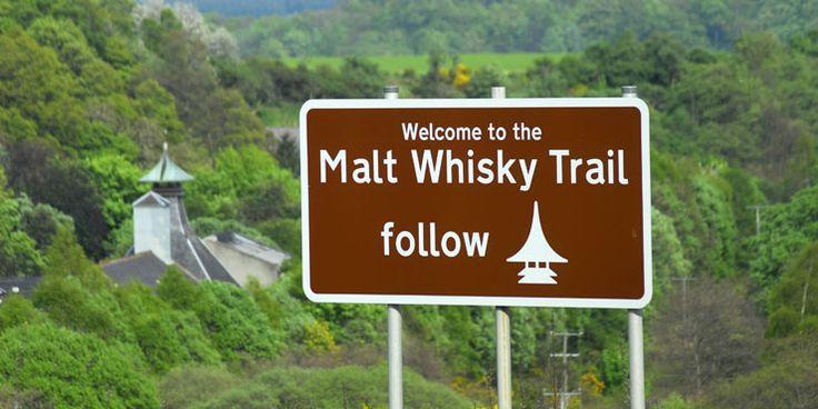 Go on a Single Malt Scotch Whiskey Tasting Tour.