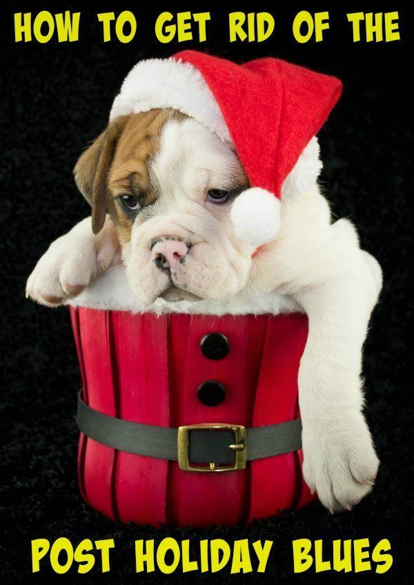 Are you feeling bummed now that the holidays are over?? Here's are some tips to fight the post holiday blues!