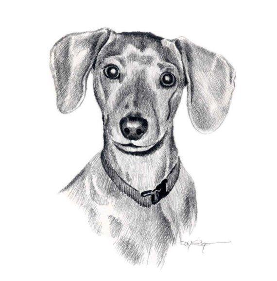 MINIATURE DACHSHUND Dog Pencil Drawing ART Print by k9artgallery, $12.50