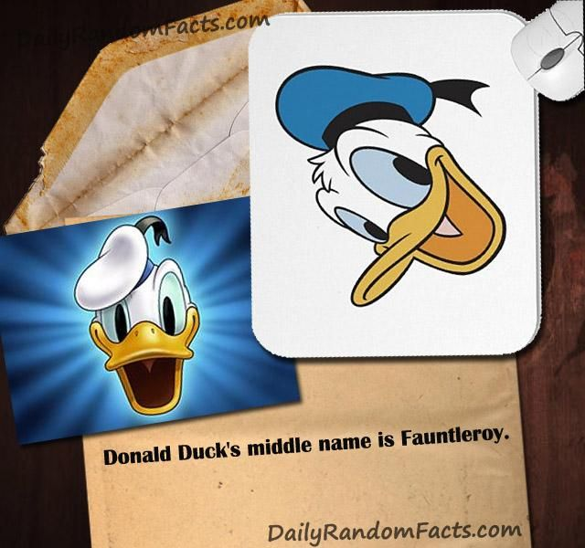 Random Facts- Donald Duck's Middle Name