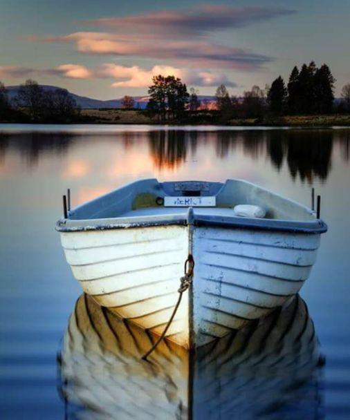Google+boats