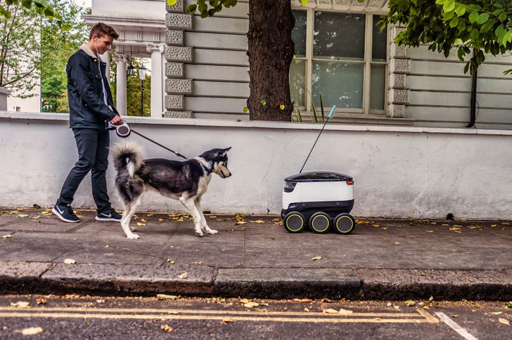 """The robots will serve you now: Greenwich, London residents have officially begun receiving deliveries from autonomous, six-wheeled rolling cooler bots, which are handling the """"last mile"""" of food delivery from nearby takeout restaurants. Engadget notes that the robots are now in """"active service,"""" after they completed a previous testing phase which began earlier this year."""