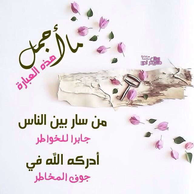 208 Likes 2 Comments رسائل مشروع تدبر Quran Tadabbor On Instagram صبــــاح الط هــر ما أجم Coffee Quotes Quran Verses Place Card Holders