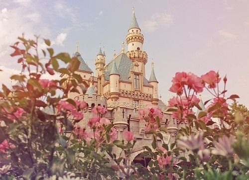 Fairy Tale Castle: Sleep Beautiful, Pink Flower, Princesses Castles, Dreams House, Disney Castles, Places, Dreams Coming True, Fairytale, Fairies Tales