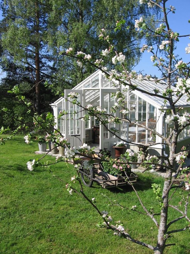 ... mitt växthus...