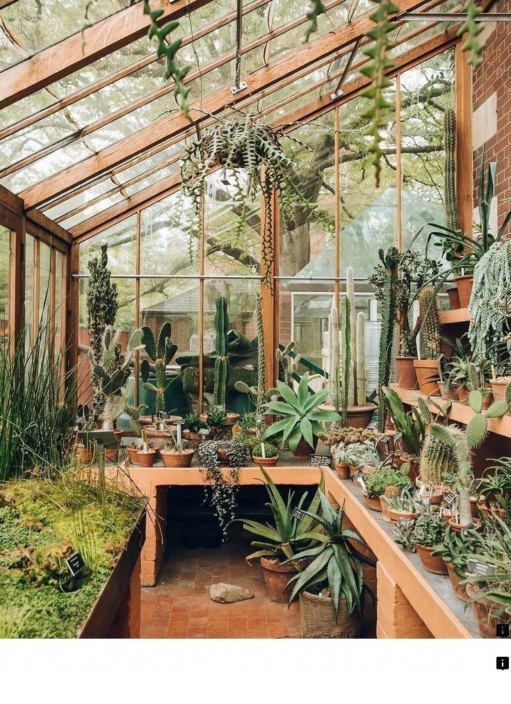 Learn About Homemade Greenhouse Please Click Here To Learn More Enjoy The Website Greenhouse Plans Greenhouse Diy Small Greenhouse