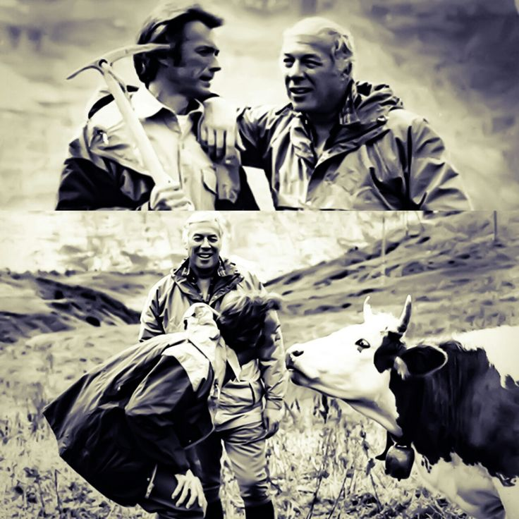 Clint Eastwood playing around on the set of the Eiger Sanction with George Kennedy and a cow