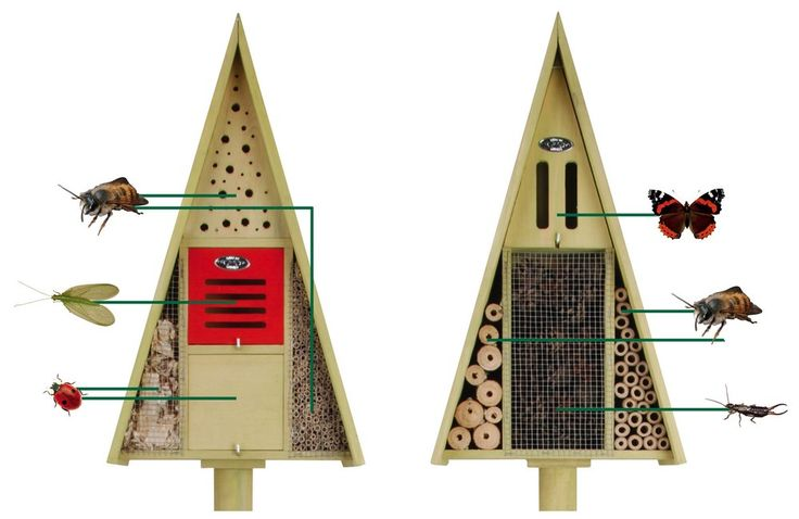 insectenhotel - Google zoeken