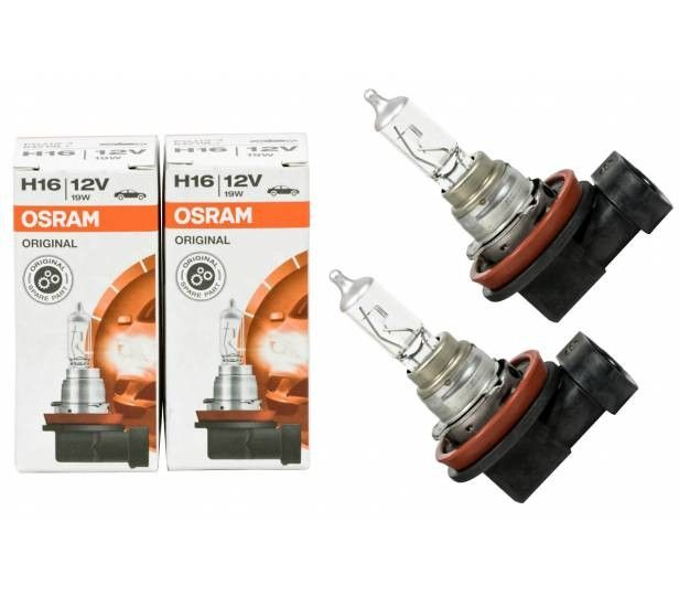 1 X Osram Longlife H16 64219l Autolampe 21 44 Osram Lampe Scheinwerfer Lampe