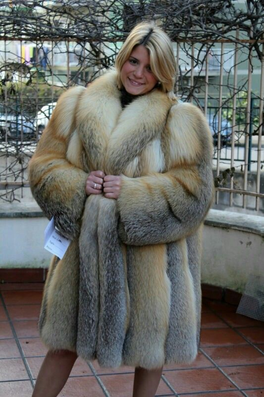 344 Best Glamorous Golden Island Fox Furs Images On