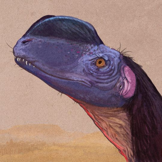 C. M. Kosemen - Portrait of Sinosaurus, a meat-eating dinosaur once thought to be a species of the Dilophosaurus, of the Jurassic Park fame. Later research revealed it to be quite a different beast, their crests were probably a case of convergent evolution.