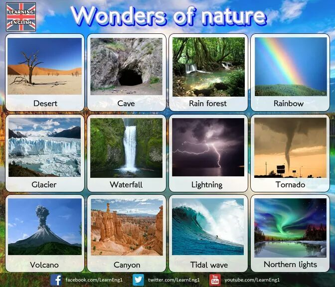 wonders of nature essay in english The wonders of nature is a book by josiah priest that was published in 1826 the book starts off giving god the honor of creating everything with the main focus being on the incredible nature, which seen by the author, is controlled by god the wonders of nature, which include a number of examples of what are now.