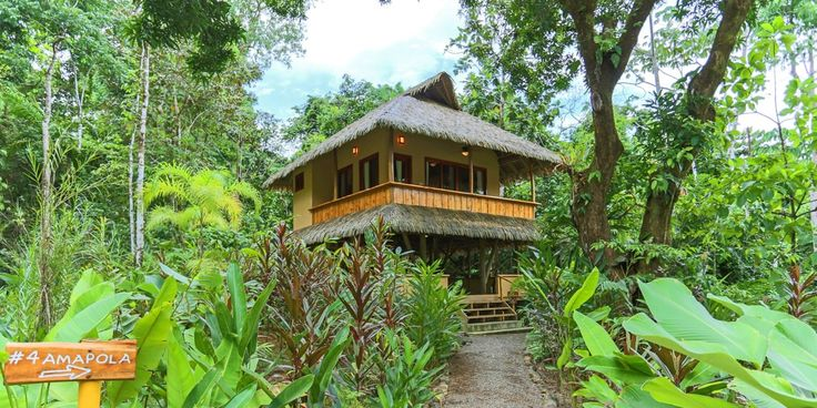 Copa De Arbol Beach & Rainforest (Costa Rica) - Jetsetter