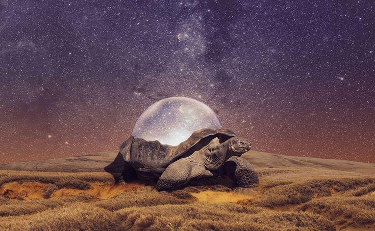 Keeper of Time by Nikolaj Reimer Hansen