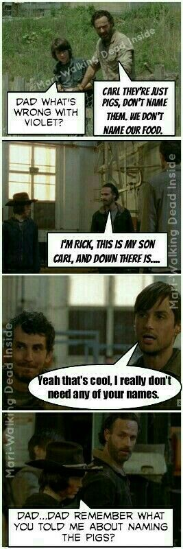 The Walking Dead, Rick Grimes, Carl Grimes, Memes