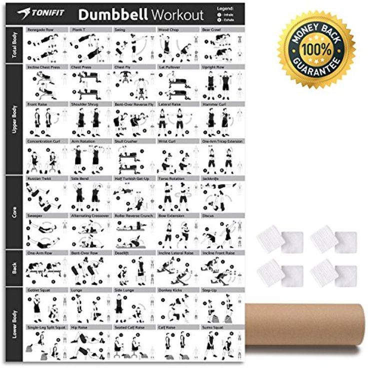 Dumbbell workout exercise poster laminated strength
