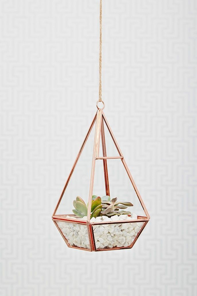 This rose gold terrarium is stunning. A wonderful geometric shape and a great…