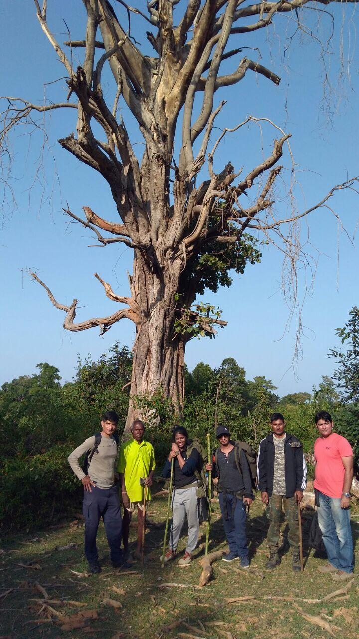 Survivors of JSA Batch 15 (48 Hours Survival Course) in front of Survival Tree.