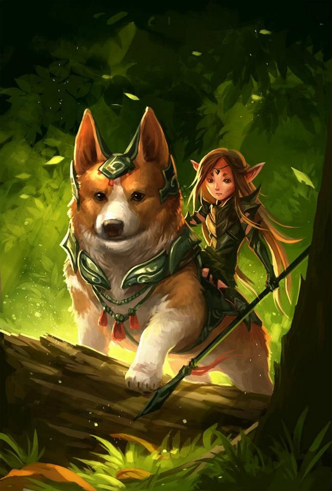 "Fairies, dragons and other mythological creatures  Corgis used to be the steeds of fairies, that's why they had the ""saddle"" fur patch.    Artist http://sandara.deviantart.com/"