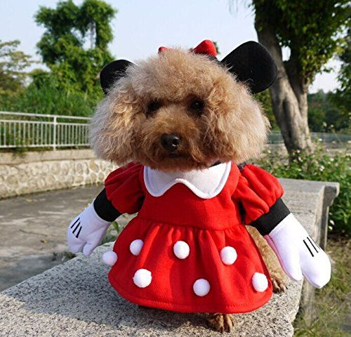 NACOCO Pet Clothes Pet Costume Minnie Costumes Dog Clothes Cat Costumes Pet Apparel >>> Remarkable product available now. : Christmas Presents for Cats
