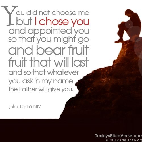 You did not choose me but I chose you and appointed you so that you might go and bear fruit, fruit that will last and so that whatever you ask in my name the Father will give you. - John 15:16    From TodaysBibleVerse.com