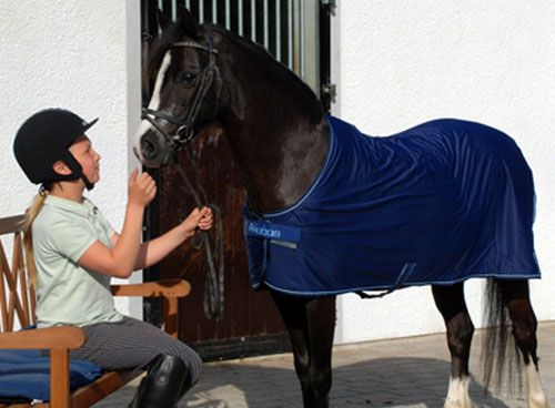 Bucas Pony Cooler The Sheet Is A High Performance Lightweight Multi Purpose Rug That Ideal As Sweat Travel Compeion