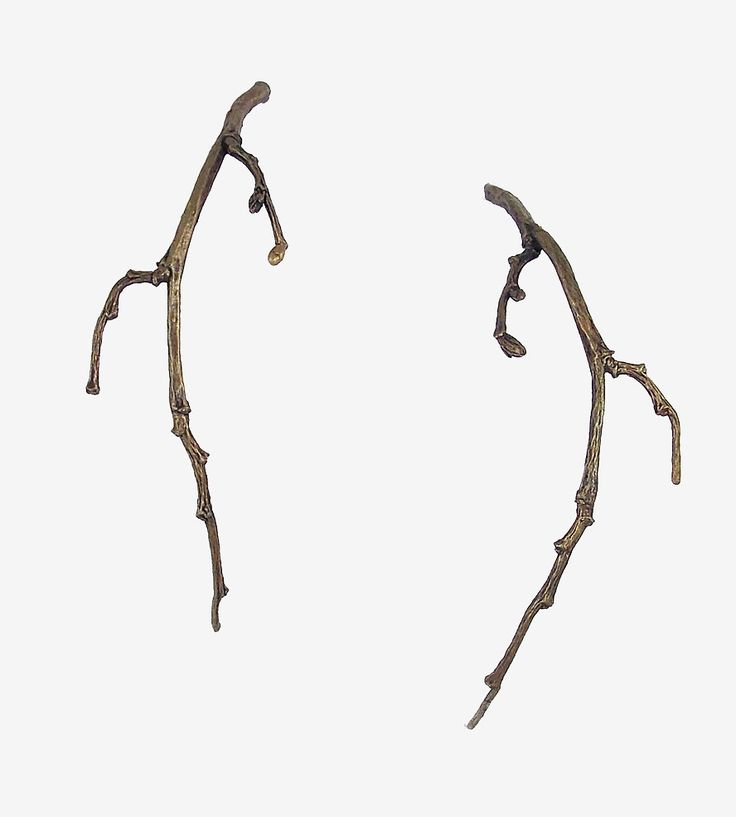 Long Bronze Twig Earrings | These twig earrings are cast from bits of nature, creating end... | Earrings