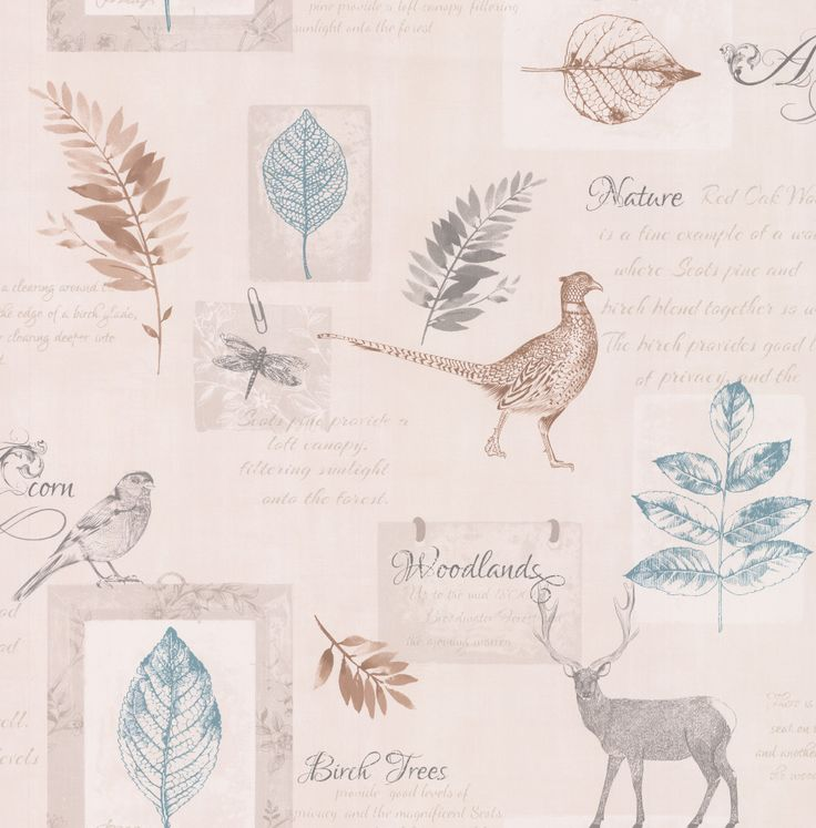 Highland Teal / Grey wallpaper by Albany