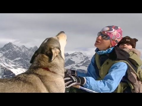 """Can you list """"howling"""" as a job skill? Field biologist Gudrun Pfleuger has mastered the skill."""