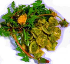 Pesto di Tarassaco
