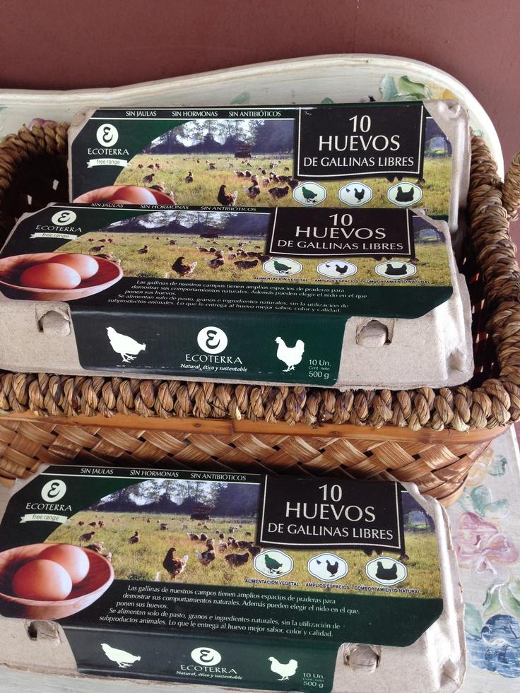 Huevos libres de Hormonas