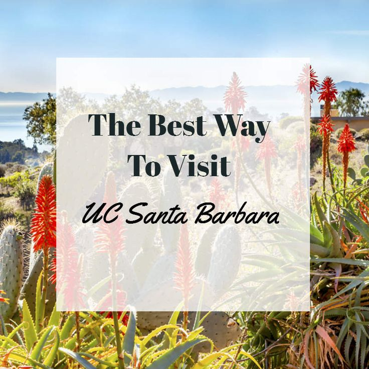 Whether you're a prospective student, proud parent, or just a Santa Barbara vacationer we're sharing the best way to visit UCSB #CheshireCattInn #UCSB
