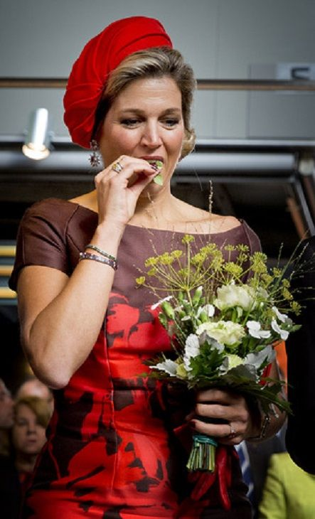 Dutch Queen Maxima attends the opening of the Rotterdam Market Hall, the first Dutch covered fresh market hall in Rotterdam, The Netherlands,on 01.10.2014