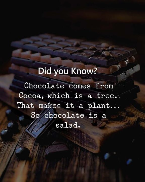 Home Hall Of Quotes Your Daily Source Of Best Quotes Chocolate Quotes Dessert Quotes Positive Quotes