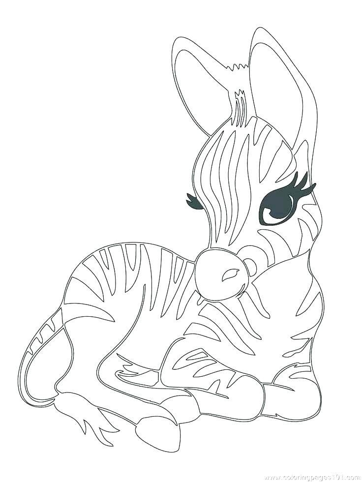 Baby Pig Animal Coloring Page For Kids Baby Animal Coloring Pages Printables Free Wupp Unicorn Coloring Pages Farm Animal Coloring Pages Bear Coloring Pages