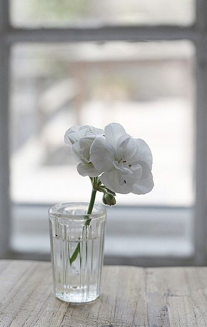 Glas with Flower