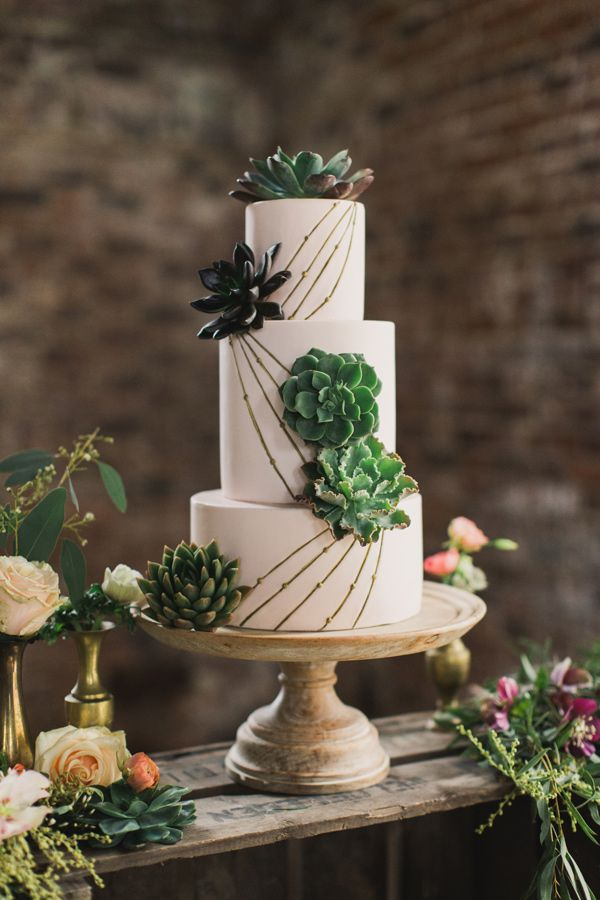 succulent cake with lines, photo by Paula O'Hara, styling by Alise Taggart http://ruffledblog.com/irish-destination-wedding-inspiration #weddingcake #cakes