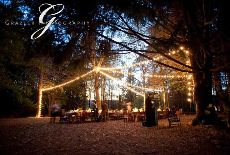 more wedding in the woods ideas | Blueprint Bride