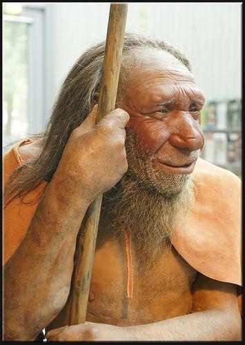 Reincarnation Stories: A Hunters Tale
