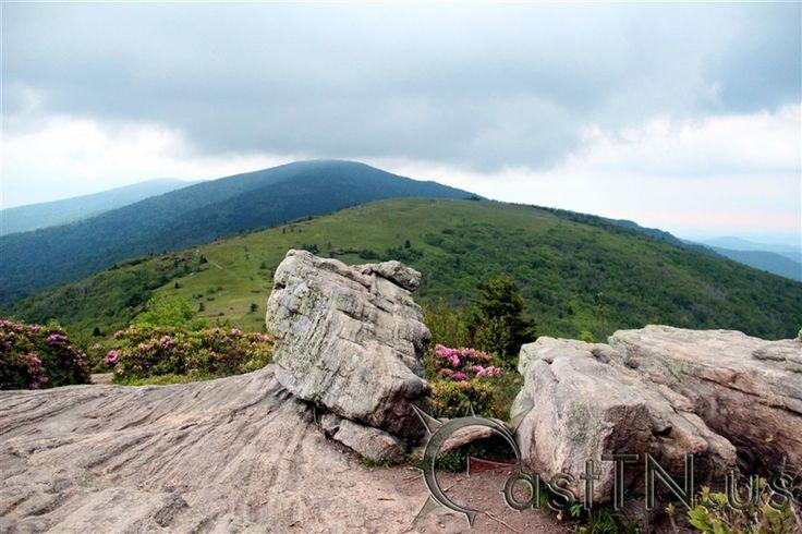 Roan Mountain Jane Bald | East Tennessee Attractions, Hiking, Outdoor Recreation | Northeast Tennessee | Tri-Cities | Johnson City | Bristol | Kingsport | Elizabethton | Jonesborough | Greeneville | Washington | Sullivan | Carter | Greene