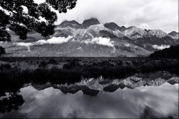 CHILBY PHOTOGRAPHY NOW HAS FREE POSTAGE TO NEW ZEALAND.