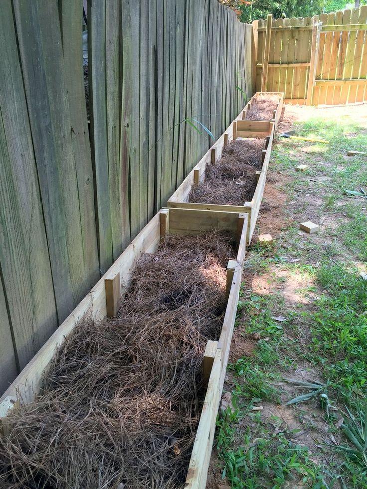 Lasagna Gardening Layering a Raised Garden Bed Garden