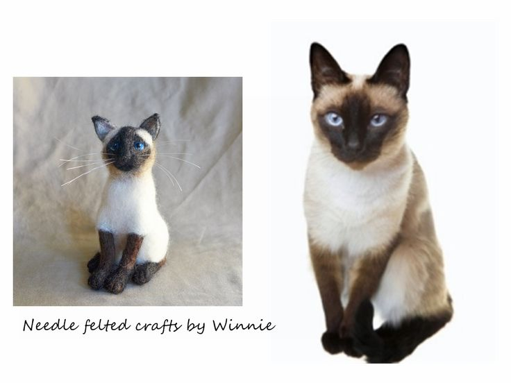 Custom made Siamese cat https://www.etsy.com/listing/186226244/needle-felted-cat-dog-custom-made-to
