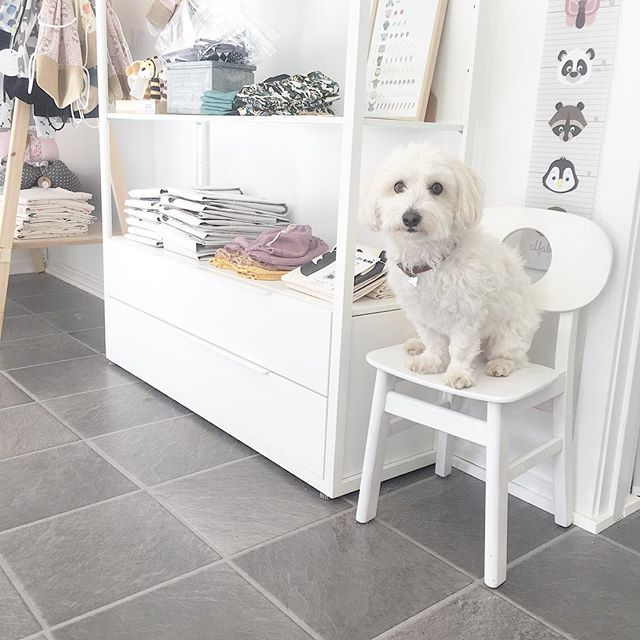 """D is for """"dog"""". Everybody's welcome at Biksn. Alfabetdyr flagship store"""